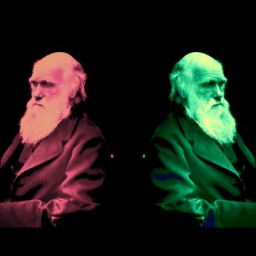 Der doppelte Darwin. Oder: Wie man mit Bequemlichkeit die Sprache verwirrt